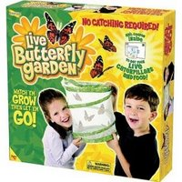 Butterfly Garden box
